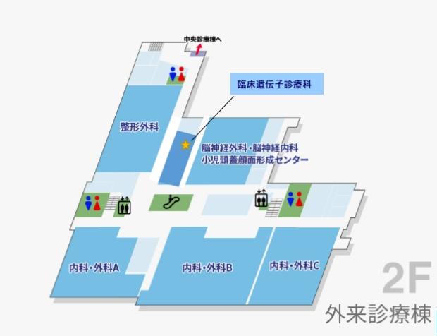 岡山大学病院 臨床遺伝子診療科外来(医科外来診療棟 2階)