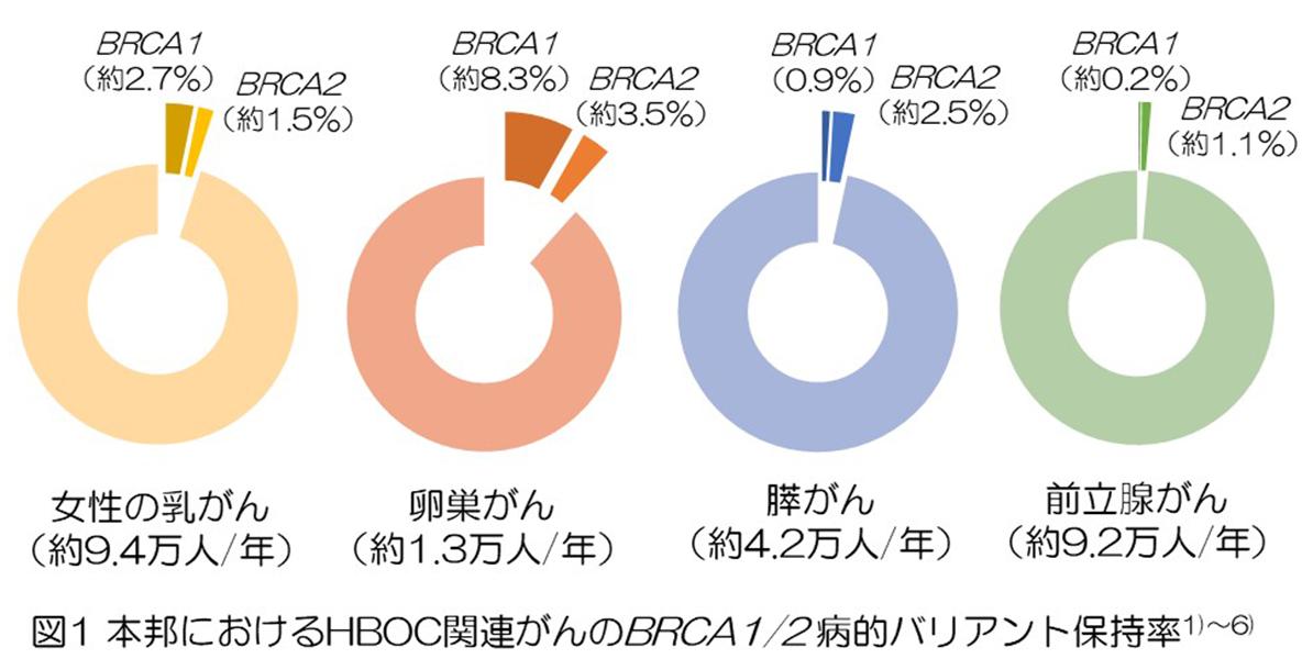 図1 本邦におけるHBOC関連がんのBRCA1/2 病的バリアント保持率