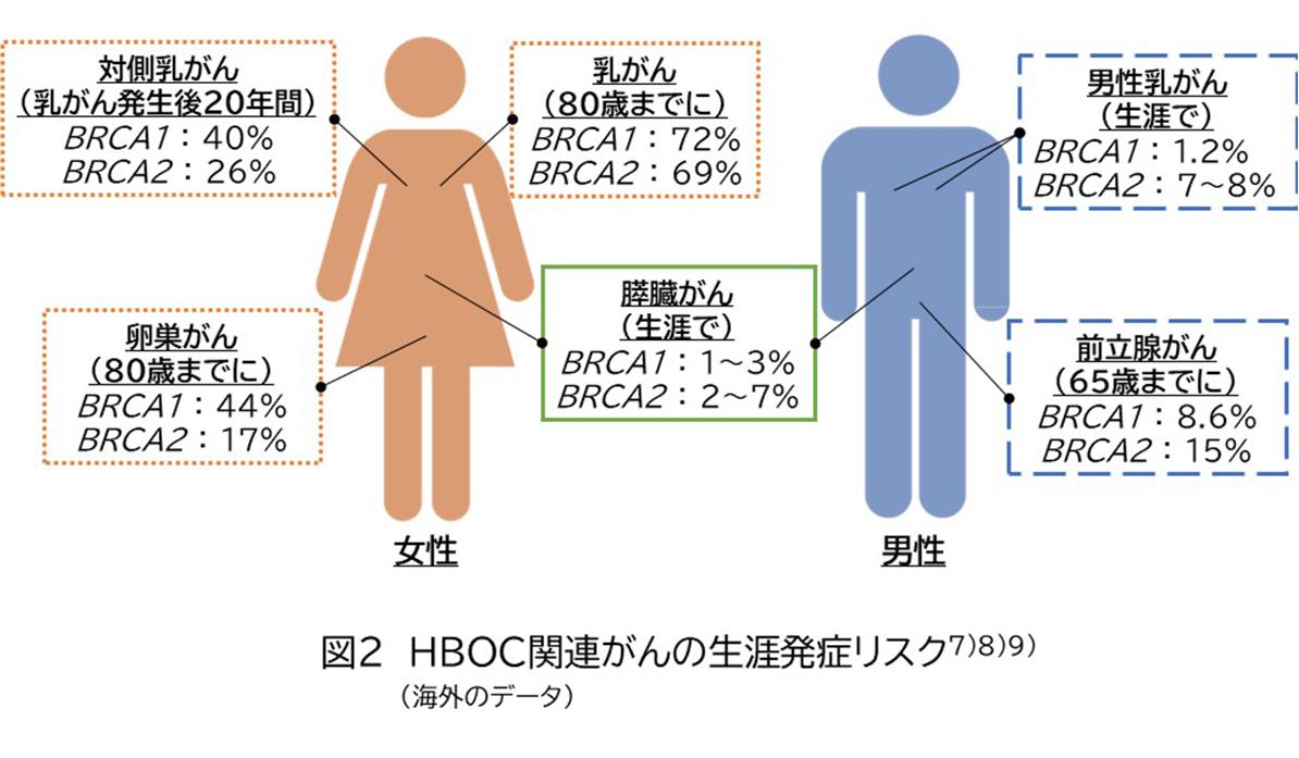 図2 HBOC関連がんの生涯発症リスク